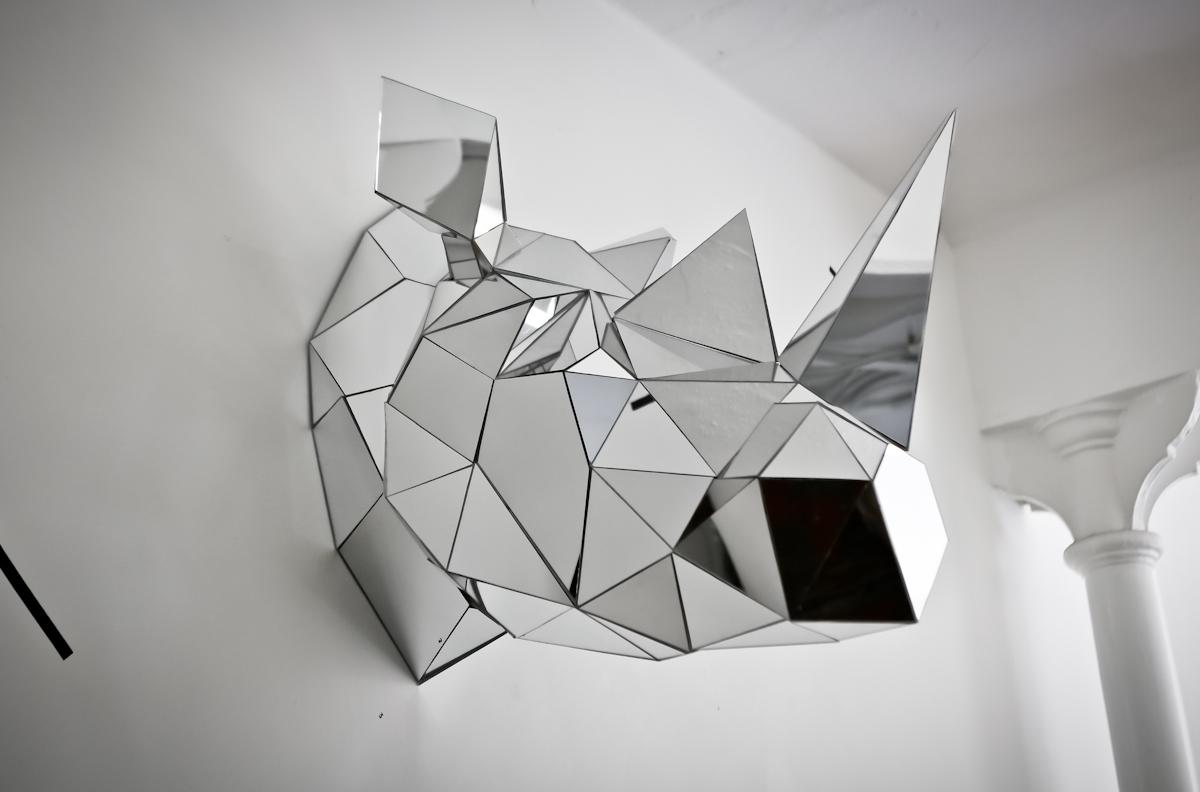 rinoceronte espelhado